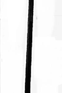 Kanupaddel mit T Griff